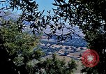 Image of Olive trees Morocco North Africa, 1943, second 57 stock footage video 65675020497