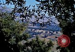 Image of Olive trees Morocco North Africa, 1943, second 59 stock footage video 65675020497