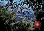 Image of Olive trees Morocco North Africa, 1943, second 61 stock footage video 65675020497