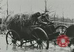 Image of Kaiser Wilhelm II World War I preparations Germany, 1914, second 11 stock footage video 65675020555