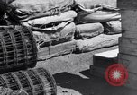Image of packing supplies Papua New Guinea, 1944, second 56 stock footage video 65675020561