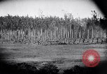 Image of packing supplies Papua New Guinea, 1942, second 26 stock footage video 65675020562