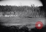 Image of packing supplies Papua New Guinea, 1942, second 28 stock footage video 65675020562
