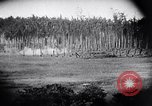 Image of packing supplies Papua New Guinea, 1942, second 29 stock footage video 65675020562