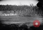 Image of packing supplies Papua New Guinea, 1942, second 30 stock footage video 65675020562