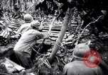 Image of packing supplies Papua New Guinea, 1942, second 37 stock footage video 65675020562