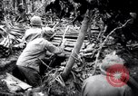 Image of packing supplies Papua New Guinea, 1942, second 38 stock footage video 65675020562