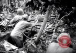 Image of packing supplies Papua New Guinea, 1942, second 39 stock footage video 65675020562