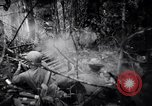Image of packing supplies Papua New Guinea, 1942, second 41 stock footage video 65675020562