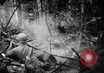 Image of packing supplies Papua New Guinea, 1942, second 42 stock footage video 65675020562