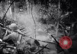 Image of packing supplies Papua New Guinea, 1942, second 43 stock footage video 65675020562