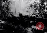 Image of New Guinea Campaign Papua New Guinea, 1944, second 47 stock footage video 65675020569