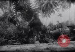 Image of New Guinea Campaign Papua New Guinea, 1944, second 49 stock footage video 65675020569