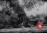 Image of New Guinea Campaign Papua New Guinea, 1944, second 50 stock footage video 65675020569