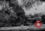 Image of New Guinea Campaign Papua New Guinea, 1944, second 51 stock footage video 65675020569