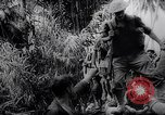 Image of New Guinea Campaign Papua New Guinea, 1944, second 52 stock footage video 65675020569