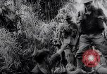 Image of New Guinea Campaign Papua New Guinea, 1944, second 53 stock footage video 65675020569