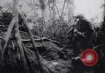 Image of New Guinea Campaign Papua New Guinea, 1944, second 56 stock footage video 65675020569