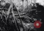Image of New Guinea Campaign Papua New Guinea, 1944, second 57 stock footage video 65675020569