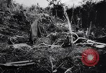 Image of New Guinea Campaign Papua New Guinea, 1944, second 61 stock footage video 65675020569