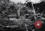 Image of New Guinea Campaign Papua New Guinea, 1944, second 62 stock footage video 65675020569
