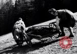 Image of German farmers Germany, 1944, second 20 stock footage video 65675020573