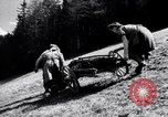 Image of German farmers Germany, 1944, second 21 stock footage video 65675020573