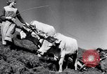Image of German farmers Germany, 1944, second 29 stock footage video 65675020573