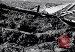 Image of German farmers Germany, 1944, second 33 stock footage video 65675020573