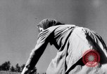 Image of German farmers Germany, 1944, second 36 stock footage video 65675020573