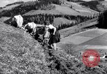 Image of German farmers Germany, 1944, second 37 stock footage video 65675020573