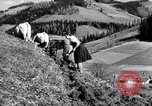 Image of German farmers Germany, 1944, second 38 stock footage video 65675020573