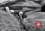 Image of German farmers Germany, 1944, second 39 stock footage video 65675020573