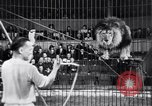 Image of circus performance Berlin Germany, 1944, second 22 stock footage video 65675020575