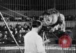 Image of circus performance Berlin Germany, 1944, second 23 stock footage video 65675020575