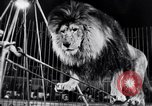 Image of circus performance Berlin Germany, 1944, second 34 stock footage video 65675020575