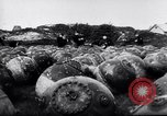 Image of naval mines Germany, 1944, second 2 stock footage video 65675020579