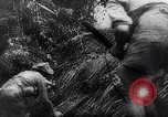 Image of New Guinea Campaign Papua New Guinea, 1944, second 61 stock footage video 65675020581