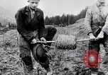 Image of German soldiers Carpathian Mountains Europe, 1944, second 28 stock footage video 65675020582