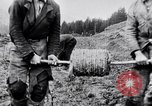 Image of German soldiers Carpathian Mountains Europe, 1944, second 29 stock footage video 65675020582