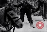 Image of German ski troops in World War 2 Finland, 1943, second 19 stock footage video 65675020588