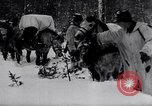 Image of German ski troops in World War 2 Finland, 1943, second 20 stock footage video 65675020588