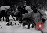 Image of German ski troops in World War 2 Finland, 1943, second 22 stock footage video 65675020588