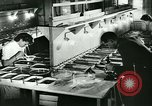Image of German laboratory mosquito experiments Berlin Germany, 1943, second 25 stock footage video 65675020606