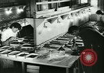 Image of German laboratory mosquito experiments Berlin Germany, 1943, second 27 stock footage video 65675020606