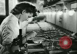 Image of German laboratory mosquito experiments Berlin Germany, 1943, second 30 stock footage video 65675020606