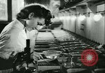 Image of German laboratory mosquito experiments Berlin Germany, 1943, second 31 stock footage video 65675020606