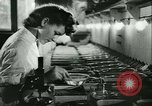 Image of German laboratory mosquito experiments Berlin Germany, 1943, second 33 stock footage video 65675020606