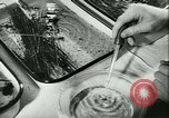 Image of German laboratory mosquito experiments Berlin Germany, 1943, second 35 stock footage video 65675020606