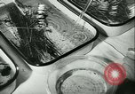 Image of German laboratory mosquito experiments Berlin Germany, 1943, second 36 stock footage video 65675020606